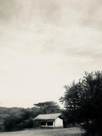 Mpala Camp Tent